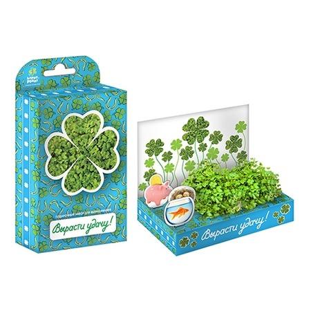 Купить Набор подарочный для выращивания Happy Plant «Живая открытка: Поздравляю-Вырасти удачу!»