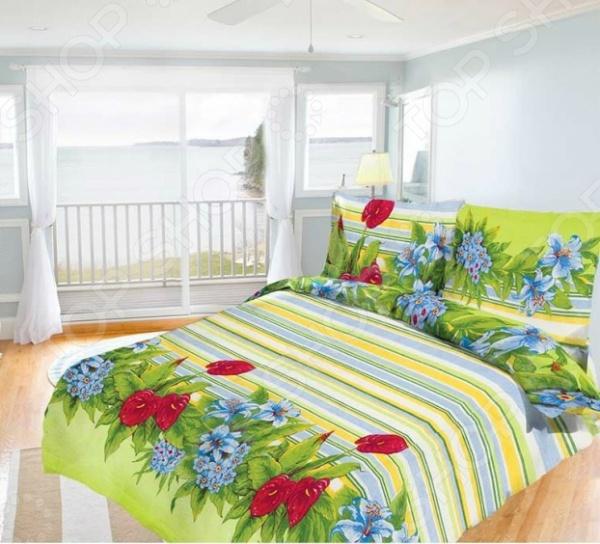 Комплект постельного белья Олеся «Царство цветов» олеся мовсина про контра и цетера