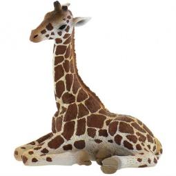 Купить Фигурка-игрушка Bullyland Детеныш жирафа