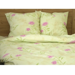 фото Комплект постельного белья Tete-a-Tete «Аленький цветочек». Евро