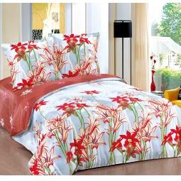 фото Комплект постельного белья Amore Mio Avantura. Poplin. 1,5-спальный