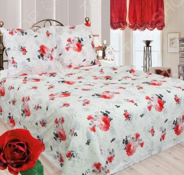 Zakazat.ru: Комплект постельного белья Сова и Жаворонок «Анабель» 19084/1. 2-спальный