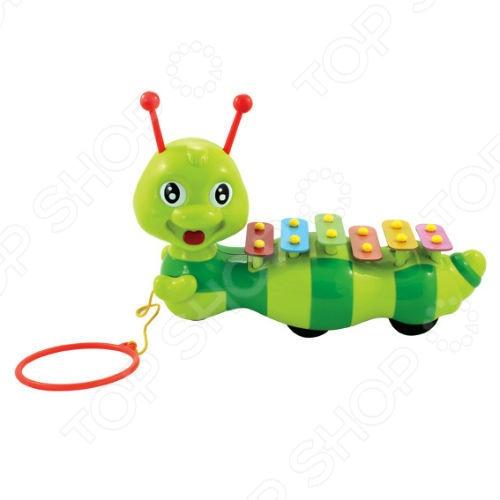 Каталка-ксилофон Toy Target ГусеницаКаталки для малышей<br>Каталка-ксилофон Toy Target Гусеница предназначена для малышей, которые уже начали ходить самостоятельно. Удерживая за большое кольцо, ее легко тянуть за собой. Забавный жучок принесет радость и веселье во время игр. В движении, разноцветные пластинки, расположенные на спине у гусенички, поднимаются и опускаются. Но главный секрет заключается в том, что по этим пластинкам можно стучать рожками-палочками, как по настоящему ксилофону, извлекая приятные звуки или даже составляя простые мелодии. Каталка Полесье Божья Коровка поможет развить тактильные навыки, зрительную координацию и мелкую моторику рук ребенка, а звуковые эффекты активно развивают его слух. Модель изготовлена из высококачественного пластика.<br>
