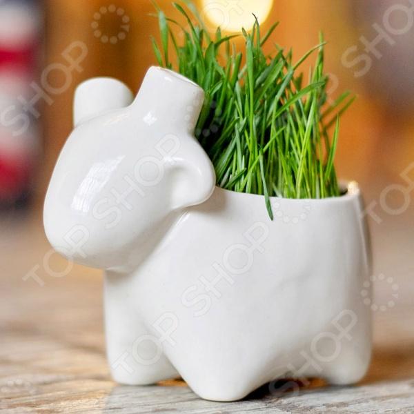Набор для выращивания Экочеловеки Eco «Овечка» экочеловеки набор для выращивания eco коротыш