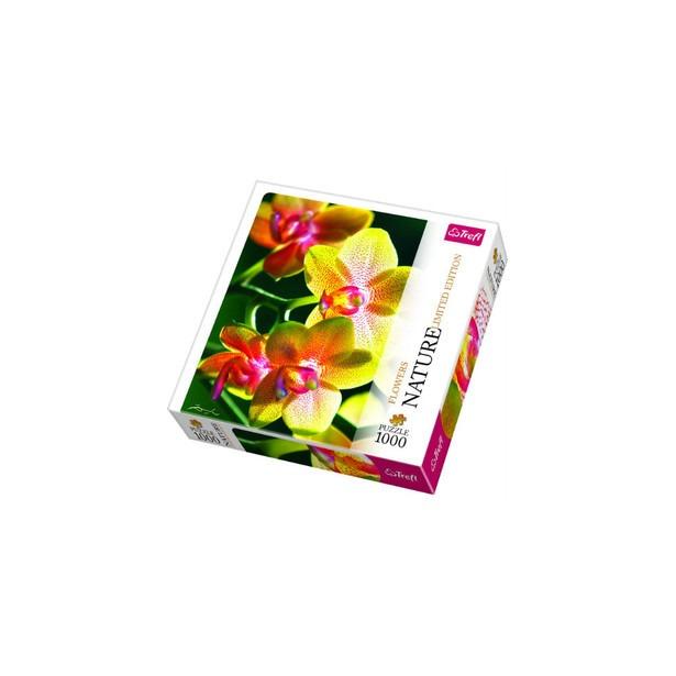 фото Пазл 1000 элементов Trefl «Орхидея»