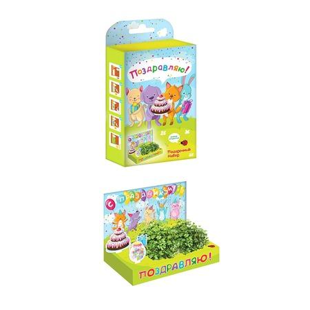 Купить Набор подарочный для выращивания Happy Plant «Живая открытка: Поздравляю!»