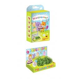 фото Набор подарочный для выращивания Happy Plant «Живая открытка: Поздравляю!»