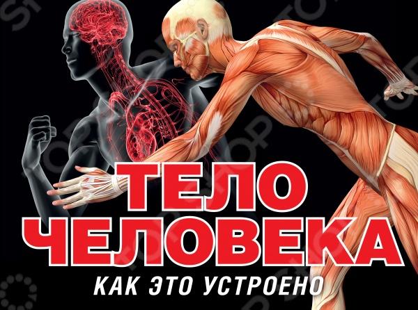 Тело человекаЧеловек<br>Тело человека представляет собой уникальный механизм, в котором все органы четко и слаженно взаимодействуют друг с другом. Наша маленькая энциклопедия рассказывает об устройстве человеческого тела. Вы узнаете почему сердце называют мотором, а мозг - центром управления, что такое органы чувств, какой путь проделывает пища, попав к нам в рот, как работает головной мозг, как устроены кровеносные сосуды, как антитела борятся с вирусами и многое другое... Красочные иллюстрации помогут лучше понять как функционируют и взаимодействуют между собой разные части нашего организма.<br>