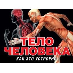 Купить Тело человека