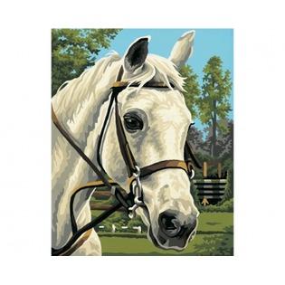 Купить Набор для рисования по номерам Schipper «Белая лошадь»