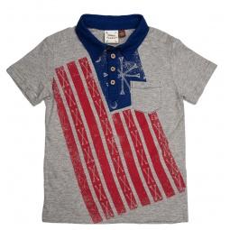 Купить Рубашка-поло для мальчиков Fore!! Axel and Hudson Born in U.S.A Print Polo