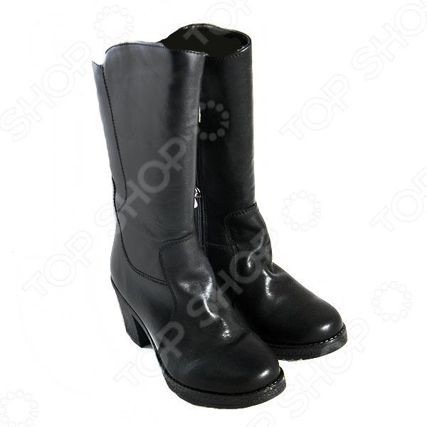 Сапоги женские АЛМИ Линда модная и практичная обувь, которая станет идеальным дополнением зимнего гардероба. Эти сапоги с высоким голенищем превосходно сочетаются практически со всеми фасонами модных узких брюк и джинсов.  Комфортная и элегантная обувь идеально подойдет для повседневного использования.  Модель на толстом устойчивом каблуке. Подошва из материала термоэластопласт сохранит ваши ноги в тепле при любой погоде.  Выдерживают температуру до -25 C . Верх сапог сделан из натуральной кожи, а подкладка из полушерсти.