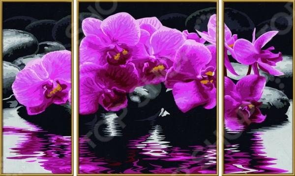 Набор для рисования по номерам Schipper «Орхидеи»