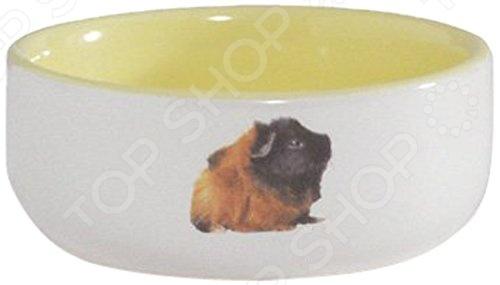 Миска для морской свинки Beeztees 801641