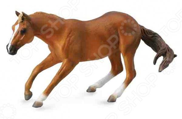Фигурка Collecta «Квартерхорс»Игрушечные животные<br>Фигурка Collecta Квартерхорс это замечательный подарок вашему малышу! Игрушка изготовлена из прочного пластика, который абсолютно безвреден для ребенка. Модель раскрашена вручную и повторяет все тонкости фигуры лошади, поэтому прекрасно подойдет для изучения вашим ангелочком этого грациозного животного. Фигурка украсит любую детскую комнату и принесет радость и веселье во время игр. Реалистичные копии от фирмы Collecta прекрасно подходят для различных инсталляций, диорам и пр. Фигурка Collecta Квартерхорс поможет развить воображение, тактильные навыки, зрительную координацию и мелкую моторику рук.<br>