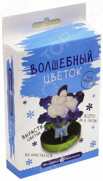Набор для выращивания Волшебные кристаллы «Васильковый цветок»  bumbaram волшебные кристаллы красный цветок сd 128