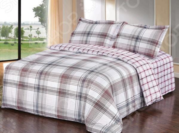 Комплект постельного белья Softline 10358. 2-спальный2-спальные<br>Комплект постельного белья Softline 10358 изготавливается из хлопковой ткани, что гарантирует крепкий сон в максимально комфортных для организма условиях. Рисунки создаются специально для этой линейки белья, что несомненно придаст уникальности любой спальной комнате. Набор станет гармоничной частью интерьера и повседневной жизни, идеально вписавшись в нее. Это постельное белье будет долго радовать хозяев, ведь оно не линяет, не садится и отлично выдерживает большое количество стирок. Кроме того, при изготовлении белья используются устойчивые гипоаллергенные красители, которые будут радовать хозяев своей насыщенностью и добавят оригинальности в повседневную жизнь.<br>