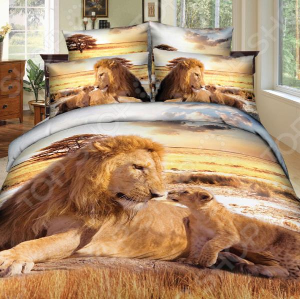 Комплект постельного белья Mango «Львы». 2-спальный2-спальные<br>Комплект постельного белья Mango Львы это незаменимый элемент вашей спальни. Человек треть своей жизни проводит в постели, и от ощущений, которые вы испытываете при прикосновении к простыням или наволочкам, многое зависит. Чтобы сон всегда был комфортным, а пробуждение приятным, мы предлагаем вам этот комплект постельного белья. Приятный цвет и высокое качество комплекта гарантирует, что атмосфера вашей спальни наполнится теплотой и уютом, а вы испытаете множество сладких мгновений спокойного сна.  Комплект выполнен из ткани, состоящей на 100 из хлопка, и обладает следующими преимуществами:  Мягкий и приятный на ощупь материал отличается высокой гигроскопичностью и хорошо пропускает воздух.  Рисунок нанесен на ткань с применением современных технологий 3D печати, что делает его не только выразительным, но и долговечным. Благодаря специальному активному красителю ткань долго не утратит своей яркости, а рисунок выразительности линий.  Натуральный материал гипоаллергенен и безопасен для здоровья.  Особое переплетение нитей ткани повышает устойчивость к легким механическим повреждениям.  Тип ткани сатин. Имеет гладкую и шелковистую лицевую поверхность с легким блеском. Практически не мнется и не деформируется. Перед первым применением комплект постельного белья рекомендуется постирать. Перед этим выверните наизнанку наволочки и пододеяльник. Для сохранения цвета не используйте порошки, которые содержат отбеливатель. Рекомендуемая температура стирки 40 С однако технология изготовления и окрашивания сатина из коллекции Mango допускает стирку даже при более высоких температурах . Обновите свою кровать таким комплектом постельного белья, и интерьер вашей комнаты заиграет новыми красками.<br>