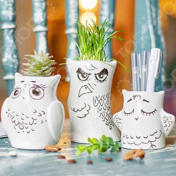 Набор горшков для растений Экочеловеки Eco «Совы 3 шт» набор для выращивания eco малыш луковка 1186609