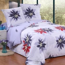 фото Комплект постельного белья Amore Mio Veterok. Poplin. 1,5-спальный