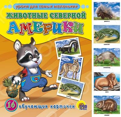 Животные. Растения. Природа Проф-Пресс 978-5-378-03077-4 Животные северной Америки. 16 обучающих карточек