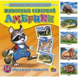 фото Животные северной Америки. 16 обучающих карточек