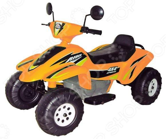 детский электрический Пламенный Мотор «Бич Рейсер»