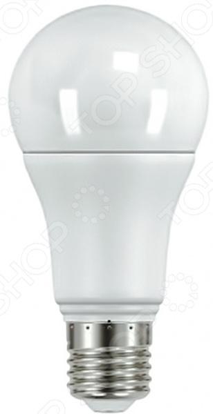 Лампа светодиодная Старт ECO LEDGLSE27 10W 40Лампочки<br>Лампа светодиодная Старт ECO LEDGLSE27 10W 40 надежный и эффективный источник света, отличающийся длительным сроком службы и стабильной работой. Изделие достаточно прочно, поэтому падение с высоты человеческого роста, а также встряски и вибрации ему не страшны. А широкий угол раскрытия позволяет осветить достаточно большую площадь. Светодиодная лампа поможет вам значительно сэкономить электроэнергию и забыть о больших счетах за коммунальные услуги без ущерба для здоровья глаз и вашего комфорта. Ведь изделие эквивалентно обычной лампе накаливания мощностью в 75 Вт. В процессе эксплуатации лампа не выделяет вредных веществ в том числе и ртуть , не излучает ИК- и УФ-лучи она абсолютно безопасна для здоровья человека. Холодное свечение создаст идеальные условия в помещении, позволит беспрепятственно заниматься домашними делами, читать и пр. Благодаря форме колбы и типу цоколя такая лампа идеально подойдет для установки в стандартный открытый светильник.<br>