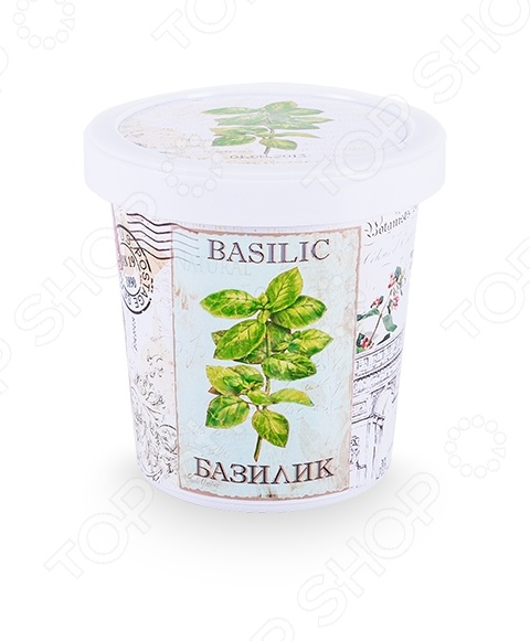 Набор для выращивания Rostokvisa «Базилик»