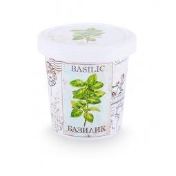 фото Набор для выращивания Rostokvisa «Базилик»