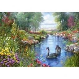 Купить Пазл Castorland «Черные лебеди»