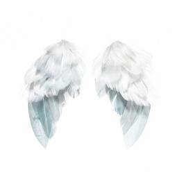 фото Набор крыльев ангелов из перьев Tilda. Количество предметов: 2. Размер: 5х9,5 см