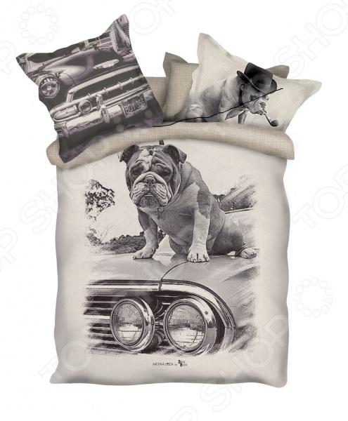 Комплект постельного белья Mona Liza Pet. 2-спальный2-спальные<br>Комплект постельного белья Mona Liza Pet с уникальными фотографическими образами для создания уюта и украшения комнаты. Человек треть своей жизни проводит в постели, и от ощущений, которые вы испытываете при прикосновении к простыням или наволочкам, многое зависит. Чтобы сон всегда был комфортным, а пробуждение приятным, мы предлагаем вам этот комплект постельного белья. Приятный цвет и высокое качество комплекта гарантирует, что атмосфера вашей спальни наполнится теплотой и уютом, а вы испытаете множество сладких мгновений спокойного сна. Фотопечать на белье это красочный рисунок, нанесенный на ткань методом реактивной, многопиксельной печати. Оцените преимущества постельного белья:  Мягкая, гладкая и шелковистая поверхность ткани.  Шелковистый блеск, легкость и двойное нитяное плетение.  Легко стирать и гладить, не беспокоясь о потере формы и цвета.<br>