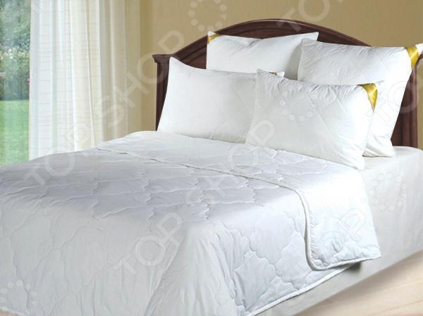 Одеяло облегченное Green Line «Бамбук»Одеяла<br>Одеяло облегченное Green Line Бамбук согреет вас холодными зимними ночами, подарит комфортный сон и приятное пробуждение. Изделие прослужит вам долгие годы. Серия Green Line представляет собой сочетание природных и синтетических компонентов. Пористая структура бамбукового волокна обеспечивает отличные условия для циркуляции воздуха и впитывания влаги. При изготовлении одеяла применяется ткань Ультратекс, которая быстро высыхает после стирки, не деформируется и практически не мнутся.<br>
