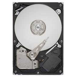 Купить Жесткий диск Seagate ST500DM002