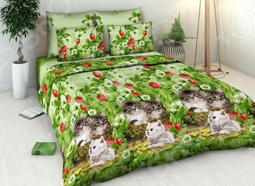 Комплект постельного белья Василиса «Котята» постельное белье василиса комплект постельного белья из сатин�� 1 5 спальный