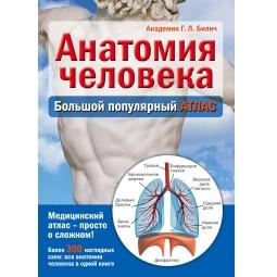 Купить Анатомия человека. Большой популярный атлас