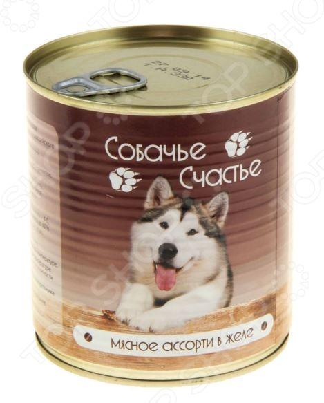 Корм консервированный для собак Собачье Счастье «Мясное ассорти в желе»Влажные корма<br>Корм консервированный для собак Собачье Счастье Мясное ассорти в желе полноценное и сбалансированное питание для вашего питомца. Рацион изготовлен из отборных ингредиентов и обогащен всеми необходимыми витаминами и минералами. Он полностью удовлетворяет потребность животных в энергии и легкоусвояемом белке. Корм не содержит в своем составе сои, консервантов, красителей, ароматизаторов и ГМО. В состав рациона входит говядина, субпродукты и мясо птицы. Эти продукты являются природными источниками протеина, витаминов группы В, железа, фосфора и калия:  протеин является строительным компонентом мышечной ткани, благотворно влияет на развитие мозга;  витамины группы В положительно влияют на обменные процессы в организме белковый, углеводный и жировой ;  фосфор способствует укреплению костной и хрящевой ткани, препятствует развитию кожных заболеваний;  железо участвует в кроветворении;  калий нормализует работу сердца. Состав: говядина, мясо птицы, субпродукты, натуральная желирующая добавка, злаки не более 2 , соль, вода. Пищевая ценность: протеин 8 , жир 7 , углеводы 4 , зола 2 , клетчатка 1 , влажность 80 . Суточная норма: 25-35 грамм на 1 кг веса животного.<br>