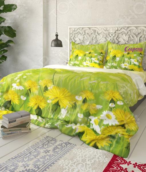 Комплект постельного белья Сирень «Зеленый луг». СемейныйСемейные<br>Комплект постельного белья Сирень Зеленый луг отличный выбор для создания уюта и комфорта. Человек треть своей жизни проводит в постели, и от ощущений, которые вы испытываете при прикосновении к простыням или наволочкам, многое зависит. Чтобы сон всегда был комфортным, а пробуждение приятным, мы предлагаем вам этот комплект постельного белья. Приятный цвет и высокое качество комплекта гарантирует, что атмосфера вашей спальни наполнится теплотой и уютом, а вы испытаете множество сладких мгновений спокойного сна. Оцените преимущества постельного белья:  Мягкая, гладкая и шелковистая поверхность ткани.  Шелковистый блеск, легкость и двойное нитяное плетение.  Легко стирать и гладить, не беспокоясь о потере формы и цвета. Украшена принтом, который не выгорает, не выцветает на солнце и при стирке, что сделает по-настоящему желанной покупкой. Для окраски использовались специальные чернила, позволяющие прямую печать на ткани. Краска прошла все необходимые проверки и имеет сертификат качества. Рекомендуется гладить с обратной стороны, при температуре 150 С, а стирать при 30 С.<br>