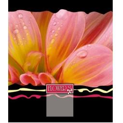 фото Тетрадь в клетку лакированная Пересвет Flowers. В ассортименте