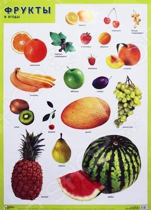 Каждый день на нашем столе присутствуют самые разнообразные фрукты и ягоды. С помощью наглядных плакатов воспитатель может рассказать ребенку, какие фрукты и ягоды растут в огородах и садах нашей страны, а какие были культивированы, привезены из других государств. Ребенок научится распознавать разные фрукты по форме. Воспитатель поможет детям сгруппировать их по форме или цвету.