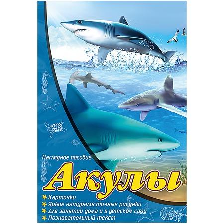 Купить Акулы. Наглядное пособие