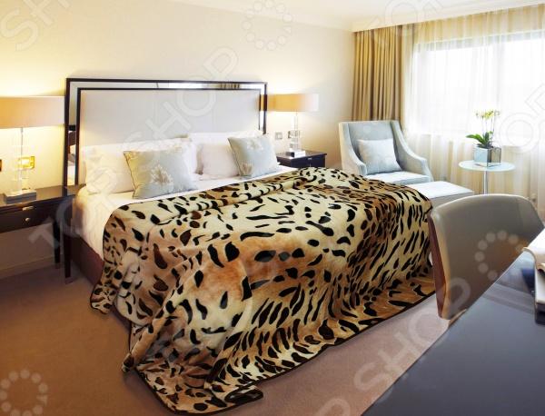 Плед Absolute ShadeПледы<br>Плед Absolute Shade прекрасно дополнит ваш диван или кровать. Он очень мягкий и приятный на ощупь, поэтому станет хорошей альтернативой легкому одеялу. Плед выполнен из микрофибры, обладающей обширным списком достоинств. Материал практически не мнется, не требует особого ухода, не линяет и не выцветает. При этом ткань не оставляет волокон даже после интенсивного использования. Микрофибра хорошо впитывает влагу, однако жидкость не проникает внутрь волокна. В результате влага не задерживается внутри материала. Плед быстро высыхает после стирки.<br>