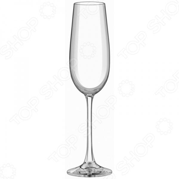 Набор бокалов для шампанского Esprado FS40C18E351