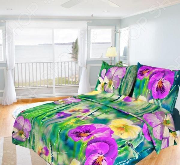 Комплект постельного белья Олеся «Фиалки» комплект постельного белья семейный олеся бязь фиалки наволочки 70x70