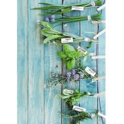 фото Блокнот для записей Травяной