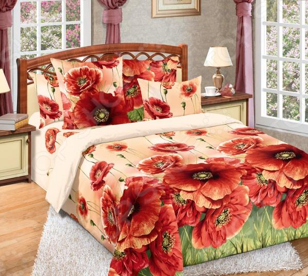 цена Комплект постельного белья Белиссимо «Кармен» онлайн в 2017 году