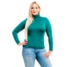 Фото Водолазка Mondigo XL 046. Цвет: темно-зеленый. Размер одежды: 48