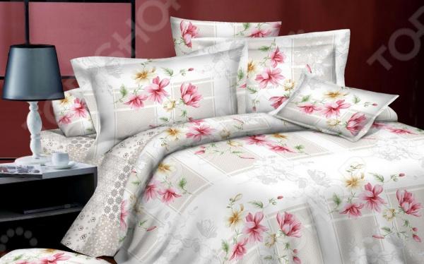 Комплект постельного белья BegAl ВТ002-И0170. 2-спальный2-спальные<br>Комплект постельного белья BegAl ВТ002-И0170 это удобное постельное белье, которое подойдет для ежедневного использования. Чтобы ваш сон всегда был приятным, а пробуждение легким, необходимо подобрать то постельное белье, которое будет соответствовать всем вашим пожеланиям. Приятный цвет, нежный принт и высокое качество ткани обеспечат вам крепкий и спокойный сон. Ткань поплин, из которого сшит комплект отличается следующими качествами:  достаточно мягка и приятна на ощупь, не имеет склонности к скатыванию, линянию, протиранию, обладает повышенной гигроскопичностью, практически не мнется, не растягивается, не садится, не выгорает, гипоаллергенна, хорошо отстирывается и не теряет при этом своих насыщенных цветов;  современная фотопечать прекрасно передаёт цвет и мельчайшие детали изображения;  за счёт специального переплетения волокон ткань устойчива к механическим воздействиям. Ткань устойчива к механическим воздействиям. Перед первым применением комплект постельного белья рекомендуется постирать. Перед стиркой выверните наизнанку наволочки и пододеяльник. Для сохранения цвета не используйте порошки, которые содержат отбеливатель. Рекомендуемая температура стирки: 40 С и ниже без использования кондиционера или смягчителя воды.<br>
