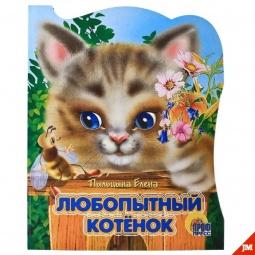 фото Любопытный котенок